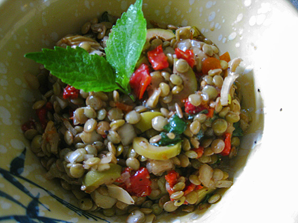 Lentil Salad with Sun Dried Tomatoes, Artichokes, Olives